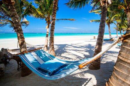 Perfect tropical beach with palm trees and hammock in Kenya Africa