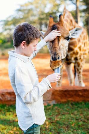Young teenage boy feeding giraffes in Africa Zdjęcie Seryjne