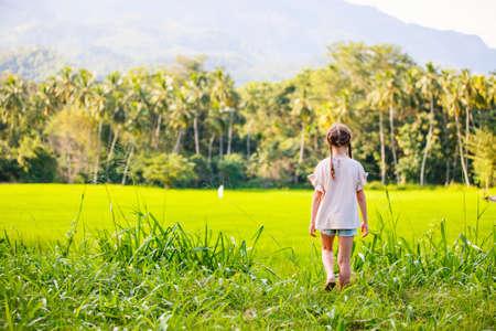 Adorable girl enjoying beautiful evening walk in rice fields in Sri Lanka