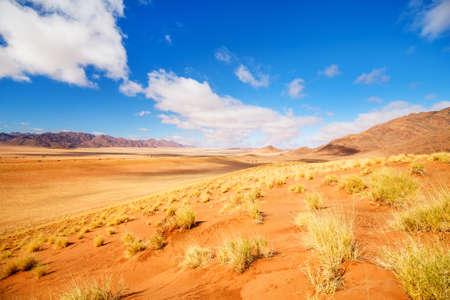 Beautiful landscape of Namib desert with orange sand dunes and Tiras mountains on background