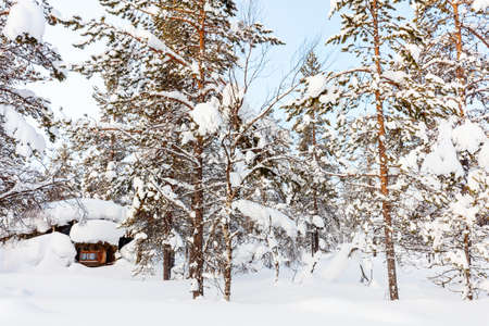 Beautiful winter landscape with wooden hut and snow covered trees in Finnish Lapland forest