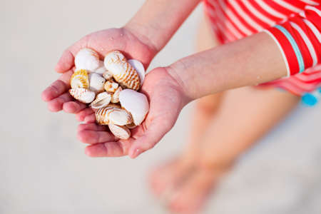 Close up of a little girl holding sea shells in her hands Zdjęcie Seryjne - 155235572