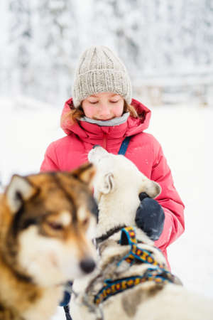 Adorable pre-teen girl cuddling with husky puppy outdoors on winter day in Lapland Finland