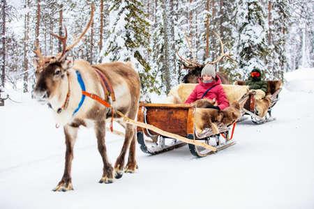 Teenage kids on reindeer safari in winter forest in Lapland Finland Zdjęcie Seryjne