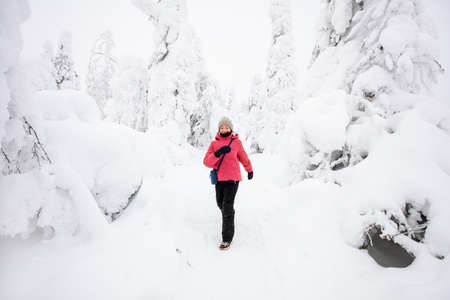 Cute pre-teen girl walking in winter forest among snow covered trees in Lapland Finland