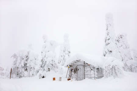 Snow covered log cabin in majestic winter forest in Lapland Finland 免版税图像