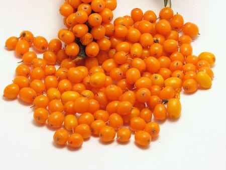 argousier: Baies matures argousier orange avec des feuilles de cluster.