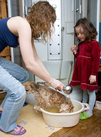 Mother and daughter washing a red dog in a bathtub Stock Photo - 7444178