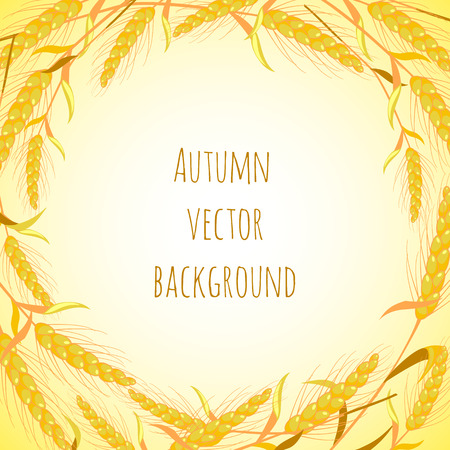 greeting card background: Autumn, ears, vector background. Invitation, greeting card, banner Illustration