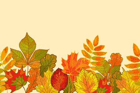 Beautiful backgrounds with the falling leaves: chestnut, oak, maple, alder. Vector seamless pattern Illustration