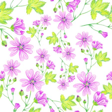 Floral summer background, seamless pattern. Wild mallow, lilac flower, flowering weed. Drawing with colored pencils