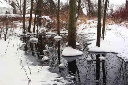 heavy snow wetland winter Stok Fotoğraf