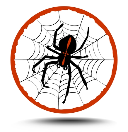 insectivorous: Composition crusader spider on his web in red circle, illustration with shadow Illustration