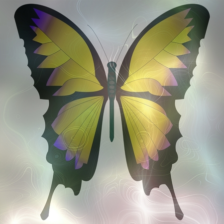 softly: Softly rendered image of a butterfly with pastel colors to smoke background. Decorative fantasy background tile.