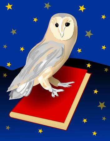 web portal: Cute barn owl, symbol of wisdom, sitting on a red book. Night landscape background with sky full of stars. emblem for a school or for educational web portal