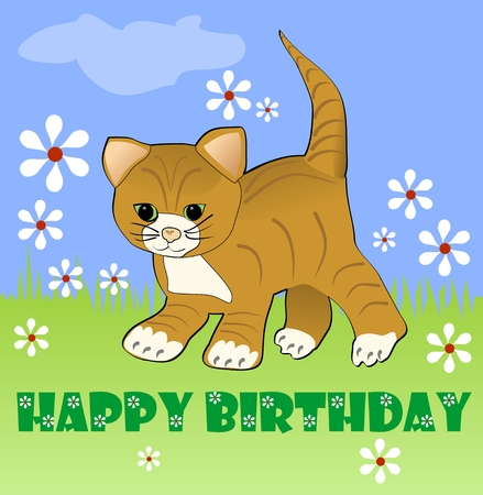 kitten small white: Cute kitten on meadow with white small daisies. Happy birthday billboard for children party. Vector illustration