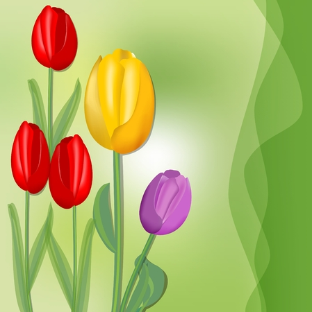 Cute spring background with colorful tulips on juicy green abstract blurry background, red, yellow and purple flower. Fresh spring theme Illustration