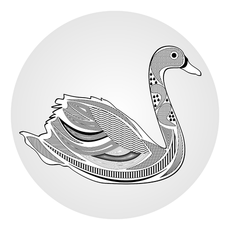 water bird: Swan, black and white drawing with hatched and patterned body parts, tattoo template of silhouette water bird