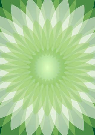 rosetta: Green abstract background with semitransparent white rosetta Illustration