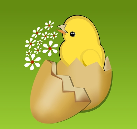 eggshell: Cute spring theme with beautiful yellow chic in egg-shell on vivid green gradient background with small white flowers Illustration