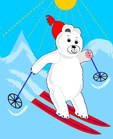 winter sport: Cute ice bear skiing. Ice bear cartoon. Sporting ice bear. Ice bear on mountain. Ice bear on red ski. Ice bear winter sport. Illustration