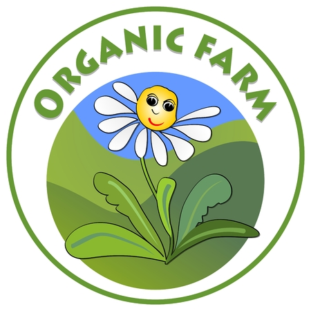 ecologic: Organic farm signboard, cheerful white flower marguerite with smiley face on green meadow in circle shape, emblem for natural products from countryside ecologic farm