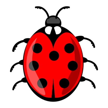 Cute ladybug cartoon isolated on white background. Vector ladybird illustration, decorative red beetle with seven dots on his wing case. Vector EPS 10