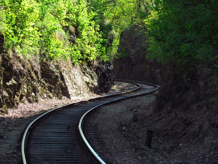 old railway tracks in nature, traveling by train