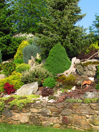 Beautiful garden, garden still life on a slope with stones planted with various colorful trees and plants, spring season