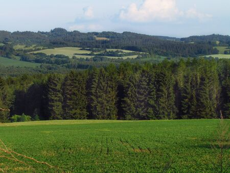 Summer rural hilly landscape with green meadow, forest, Czech republic Фото со стока