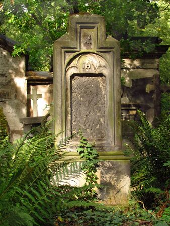 Old tombstone with missing names overgrown with ferns Фото со стока