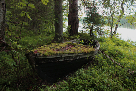 Boat in the forest Stockfoto
