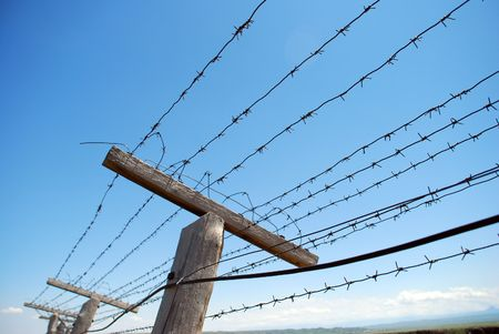 barbed wire fence Stock Photo - 6278733