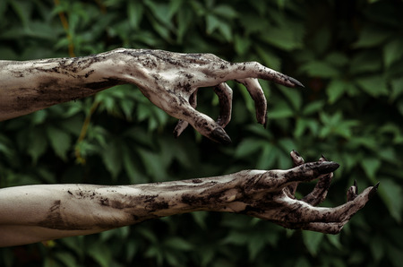 Horror and Halloween theme: Terrible zombie hands dirty with black nails reaches for green leaves, walking dead apocalypse studio