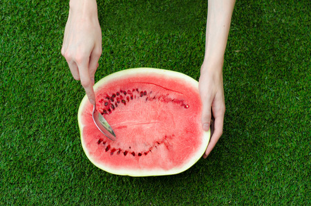 Summer and fresh watermelon theme: a man holds out a spoon with watermelon on the green background studio Standard-Bild
