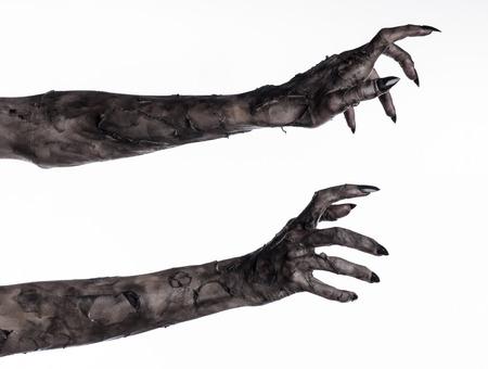 mano nera della morte, i morti a piedi, tema zombie, tema halloween, le mani zombie, sfondo bianco, isolato, mano della morte, le mani mummia, le mani del diavolo, unghie nere, mani mostro