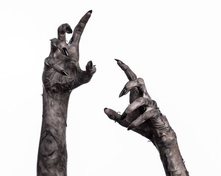 walking corpse: black hand of death, the walking dead, zombie theme, halloween theme, zombie hands, white background, isolated, hand of death, mummy hands, the hands of the devil, black nails, hands monster Stock Photo