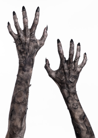 black hand of death, the walking dead, zombie theme, halloween theme, zombie hands, white background, isolated, hand of death, mummy hands, the hands of the devil, black nails, hands monster Standard-Bild