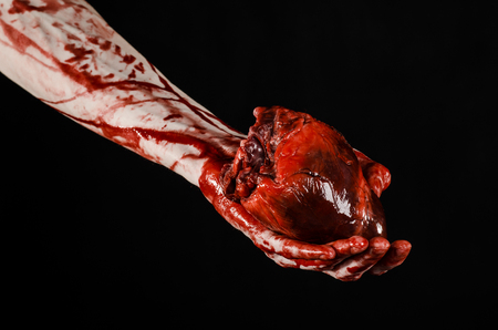 carnage: Blood and Halloween theme: terrible bloody hand hold torn bleeding human heart isolated on black background in studio Stock Photo