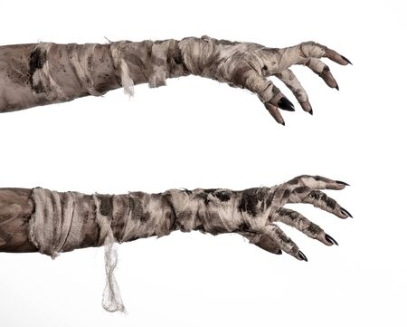 mummification: Halloween theme: terrible old mummy hands on a white background