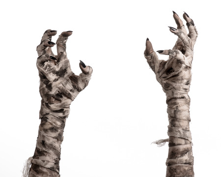 Halloween theme: terrible old mummy hands on a white background