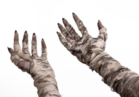 mummified: Halloween theme: terrible old mummy hands on a white background