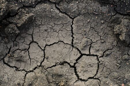 black soil: Natural texture theme: dry crack in the black soil studio