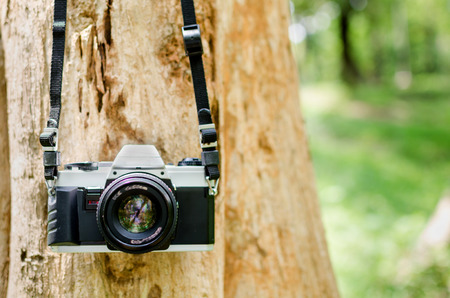 Film camera hanging on a tree in natural outdoor vintage look