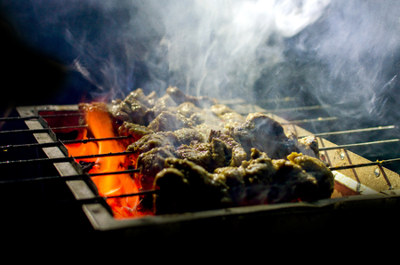 coal fish: Cooking Smoky   Spicy beef barbecue in coal fire for summer party isolated in dark background Stock Photo