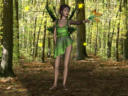 forest fairy photo