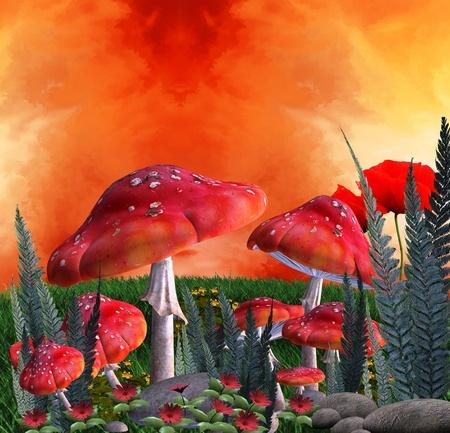 Mushrooms magic place  Reklamní fotografie