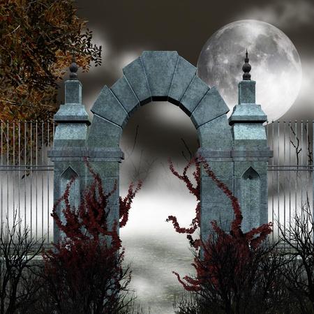 portone: Porta gotica con nebbia Archivio Fotografico