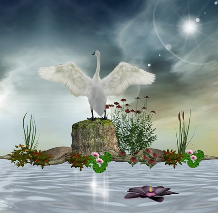 Enchanted swan photo