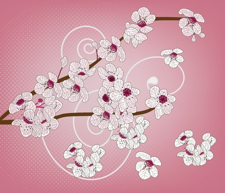 cherry blossom - ramo artistico